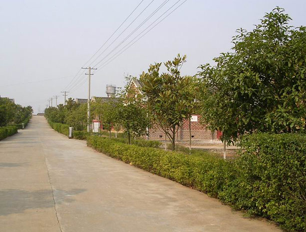Jilai Factory--43F407
