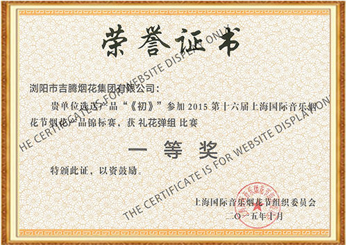 Gold Medal in Shanghai International Musical Fireworks Festival